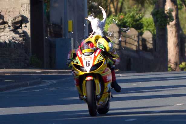 Greatest Motorsport on Earth-%A3%A3%A3-reuse-fee-applies-isle-man-tt-star-ian-hutchinson-had-lucky-escape-during-his-opening.jpg