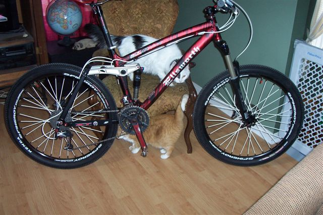 All Our Bikes-000_2613.jpg