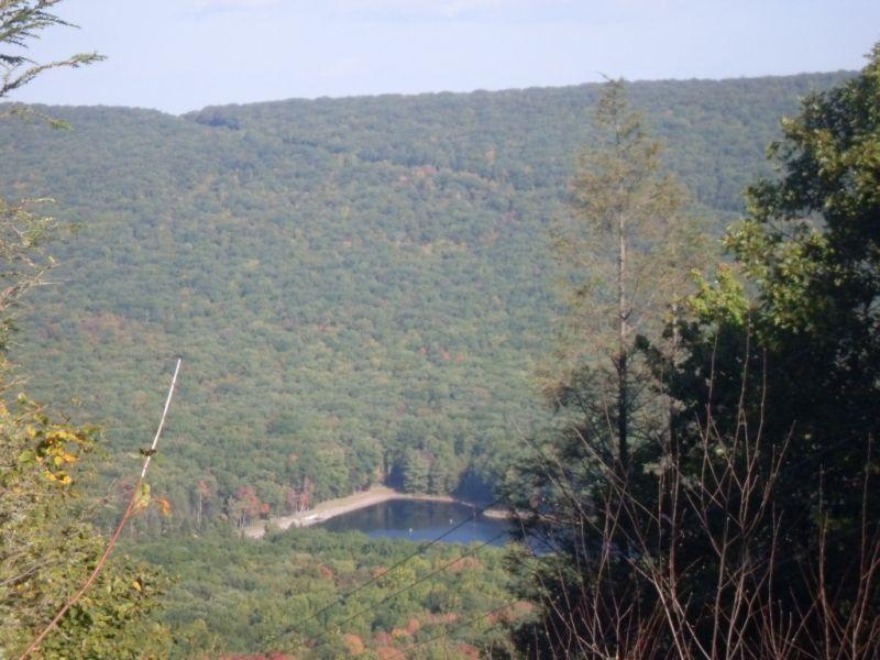 Roaring Creek With Mini & The Boy-001.jpg