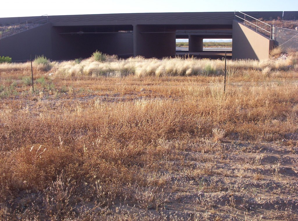 North Phoenix  -   BCC-001.jpg