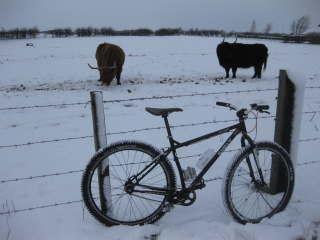 Post pics of your Surly!!!-002.jpg