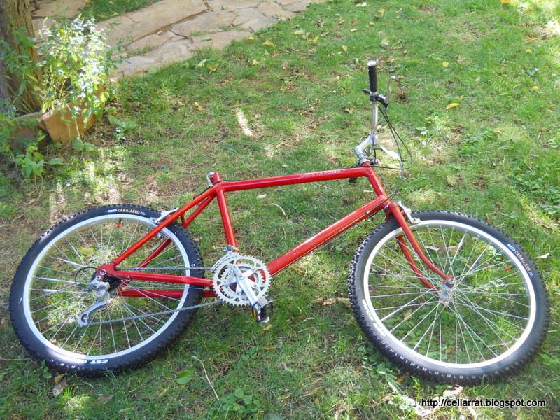 this old bike-003.jpg