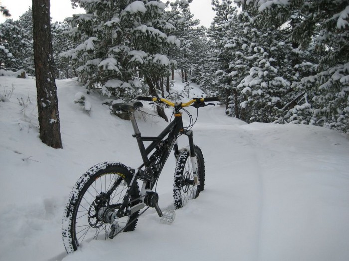 Single Speeded Dh bikes-003b.jpg