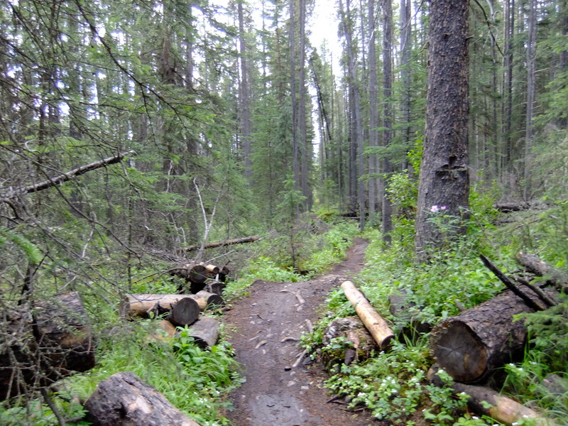 Upcoming Canmore Vacation - rental and trail suggestions-004.jpg