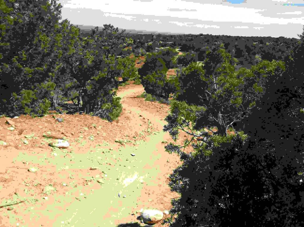The NM Trail Pix Thread-004.jpg