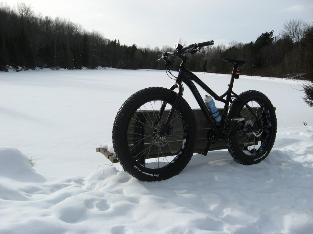 2014 Norco Bigfoot-004.jpg