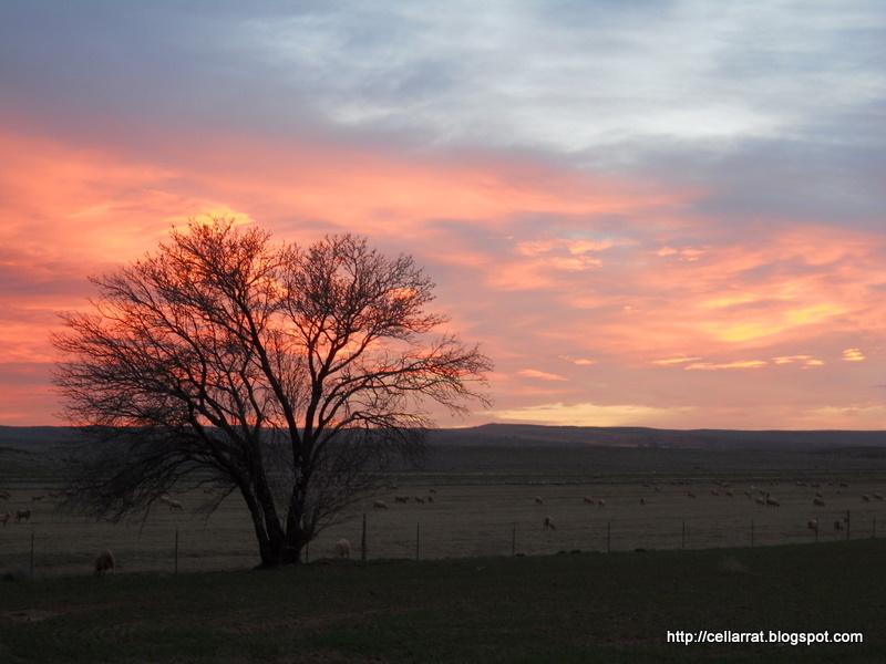 Sunset today-005.jpg