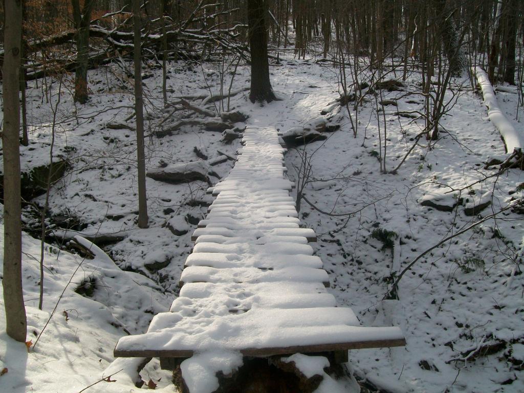 Photo Assignment: Snow-008.jpg