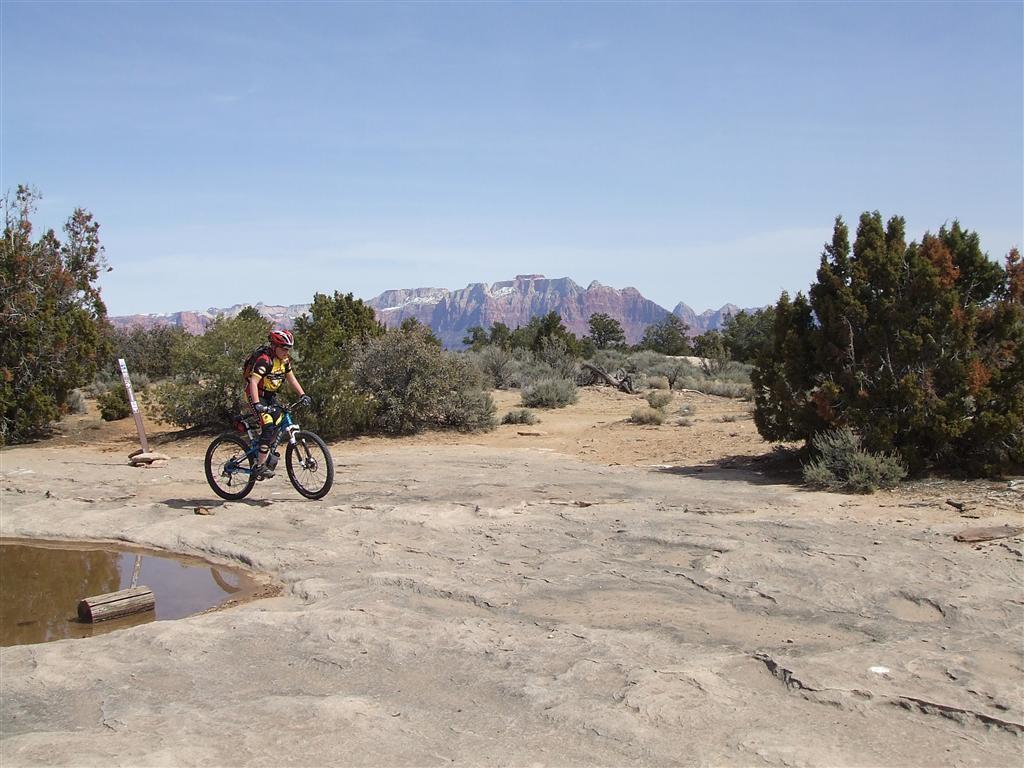 Bike + trail marker pics-008-medium-.jpg