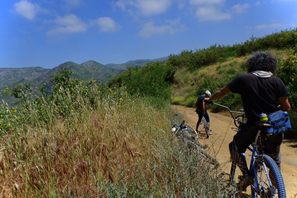 did a little riding-00d8afe9-f2cf-43f6-837f-ccc960e33ee6-4322-000003b9cb4c1ccc.jpg