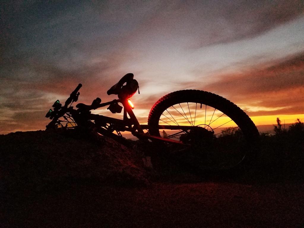 Night Riding Photos Thread-01.29.2019-calavera-01.jpg