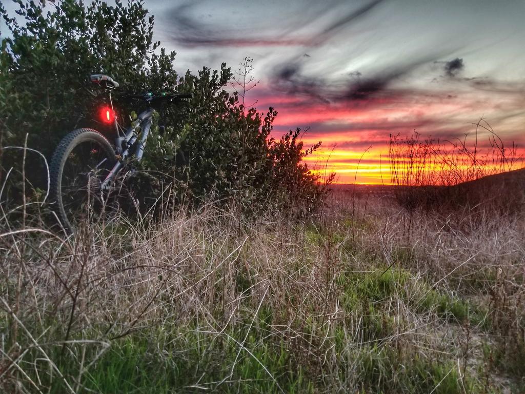 Night Riding Photos Thread-01.30.2018-calavera.jpg