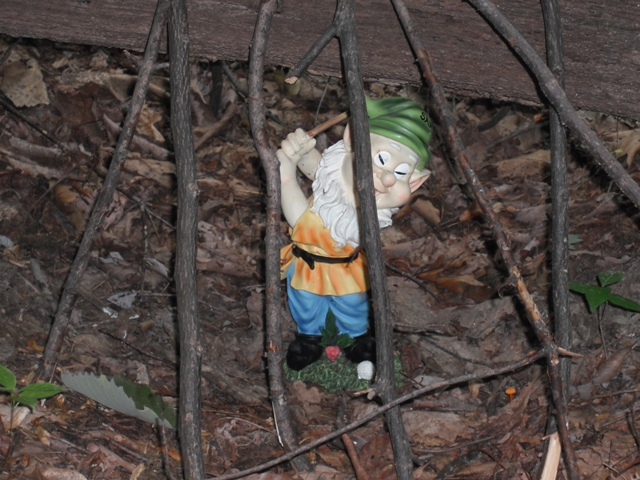 Adventures with the Pisgah Gnome-01.jpg