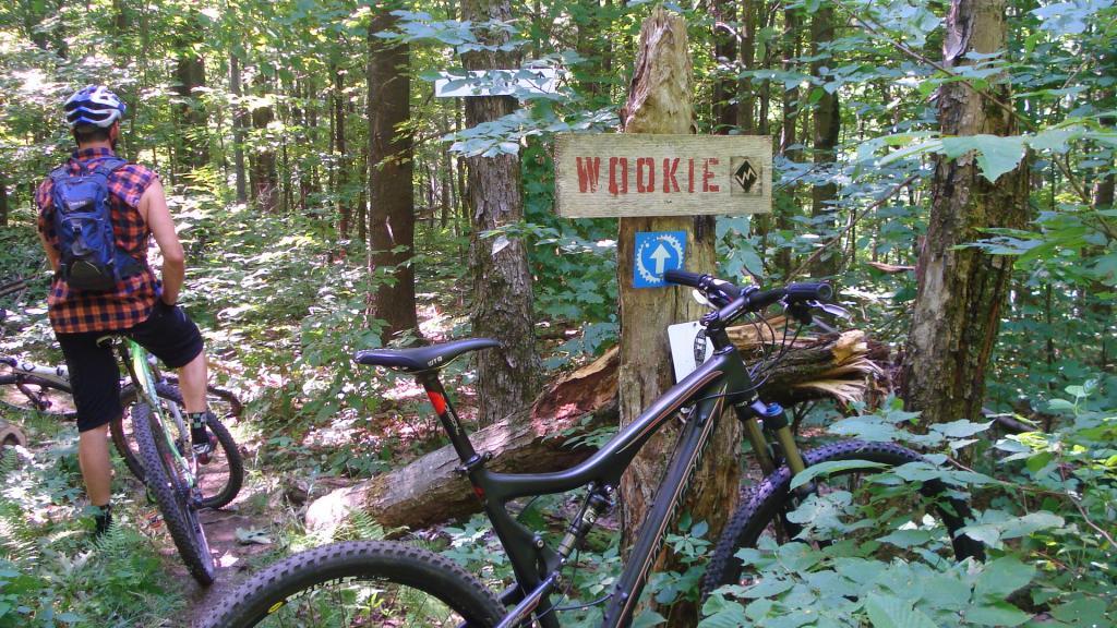 Vermont Mountin Bike Festival-011.jpg