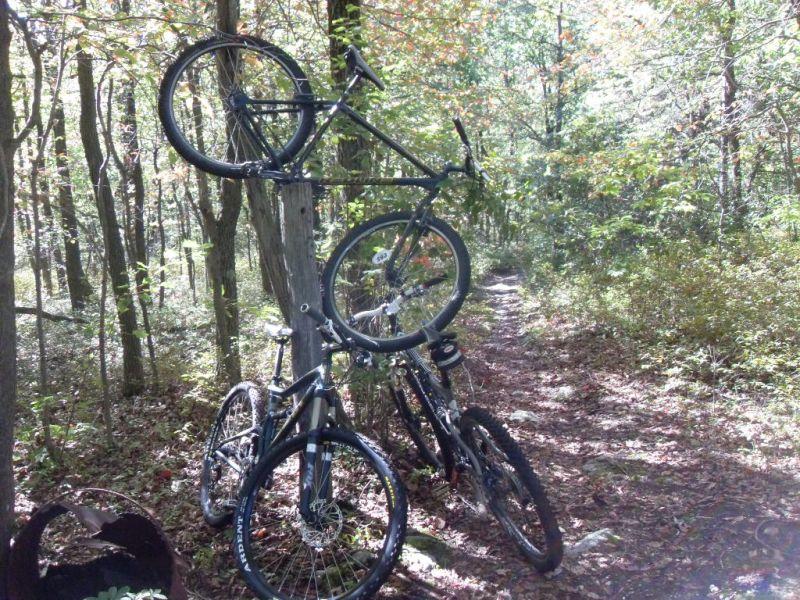 Weekend at Roaring Creek-016.jpg