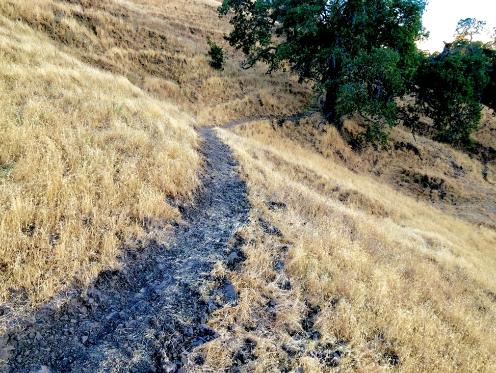 Oct 8-11, 2018 Weekly Ride and Trail Conditions Report-01a5e22c-1d0e-4f2a-9d9a-addf9480d868.jpeg