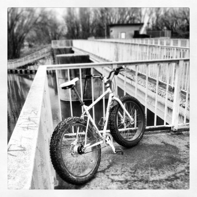 Global Fat Bike Day 2013-01ku.jpg