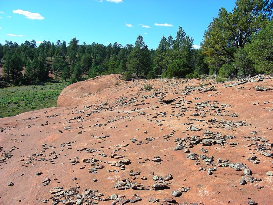 The NM Trail Pix Thread-01sep14.jpg