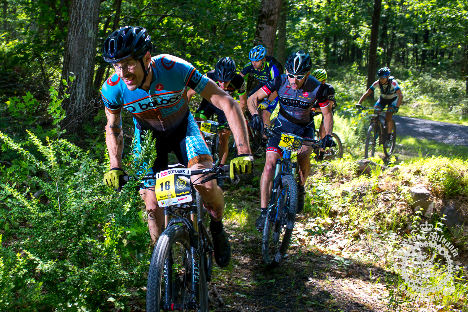 Michael Wissell (Cuppow/Geekhouse/B2C2) leads out a group through the woods at the NoTubes Trans-Sylvania Epic. Photo by the Trans-Sylvania Epic Media Team