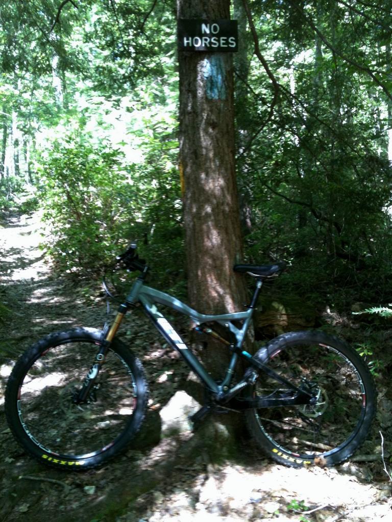 Bike + trail marker pics-020-copy.jpg