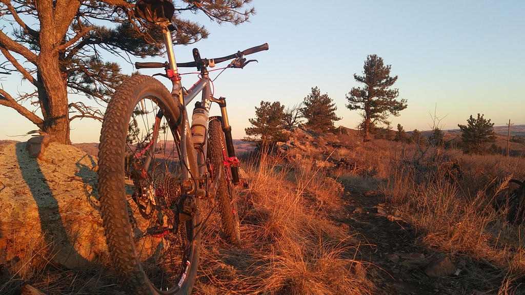 did you ride today?-0201190713a.jpg