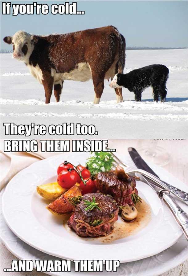 The Best Memes-021215_theyrecoldmeme.jpg
