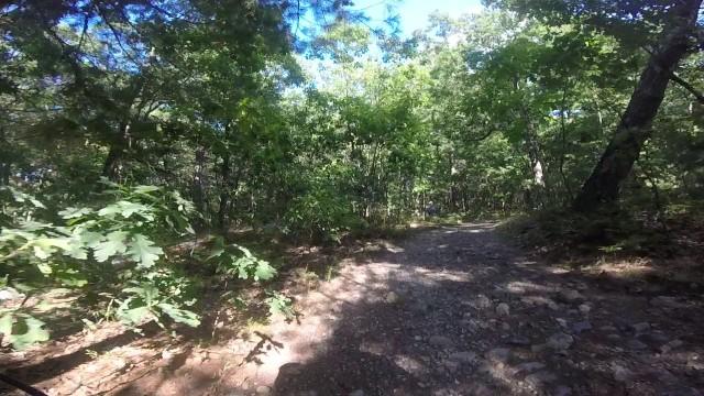 MA Trails Picture Thread-02trail.jpg