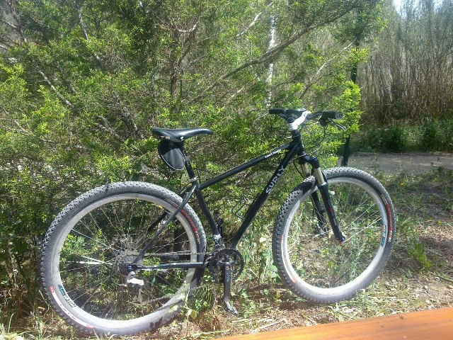 Post Pictures of your 29er-03042010105.jpg