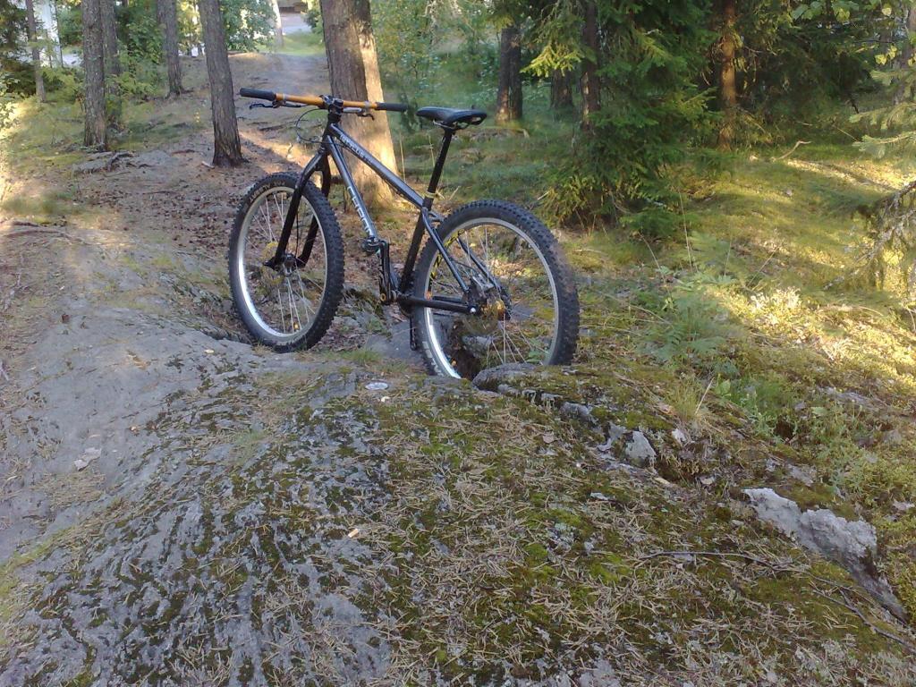 my summer on a bike passion 2013-030820131020_crop.jpg