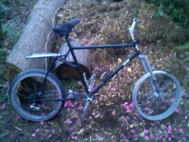 Fat Bike  history-0312001815.jpg