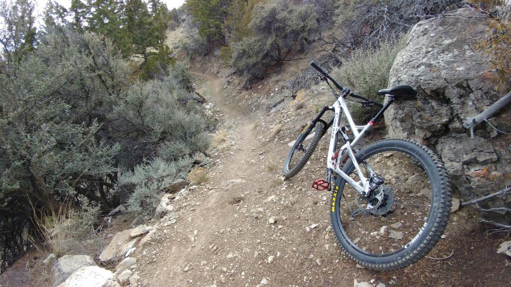 2016 Canfield Balance Trail Photo Thread-0324171611.jpg