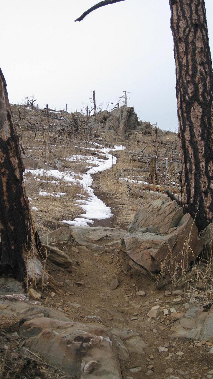 Bobcat Ridge Open-038.jpg