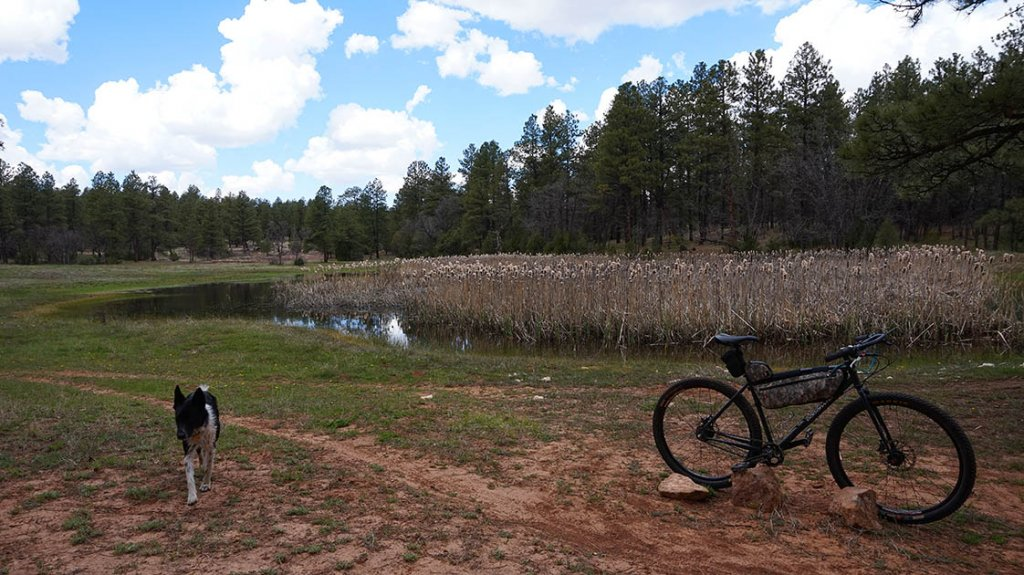 Post a picture or two of your neck of the woods-03may15c.jpg