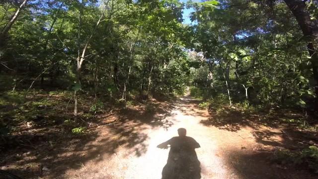 MA Trails Picture Thread-03trail.jpg