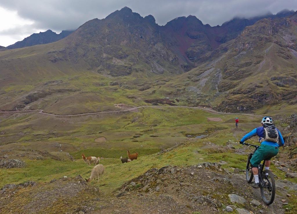 Biking in Peru-03upperlaresdsc00830.jpg