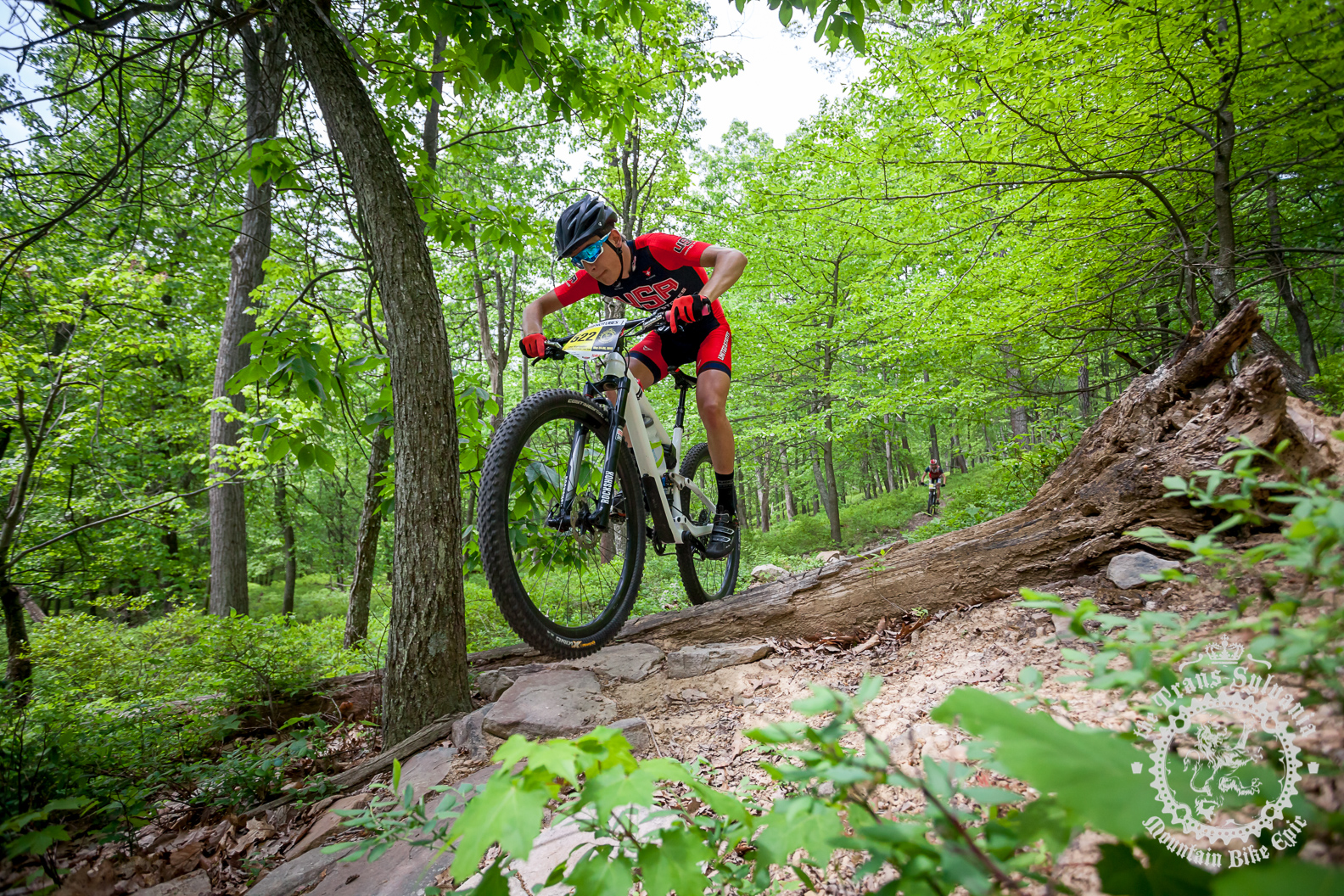 Levi Kurlander (Colt Training Systems) rallies a section of singletrack at the NoTubes Trans-Sylvania Epic. Photo by the Trans-Sylvania Epic Media Team