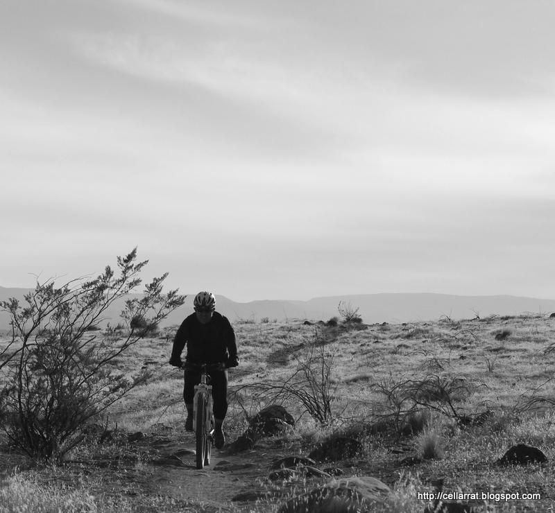 I love my bicycle-040.jpg
