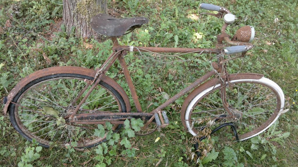 Found An Old Schwinn In The River Today Kinda Wanna Turn It Into