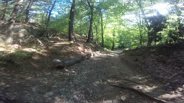 MA Trails Picture Thread-04trail.jpg