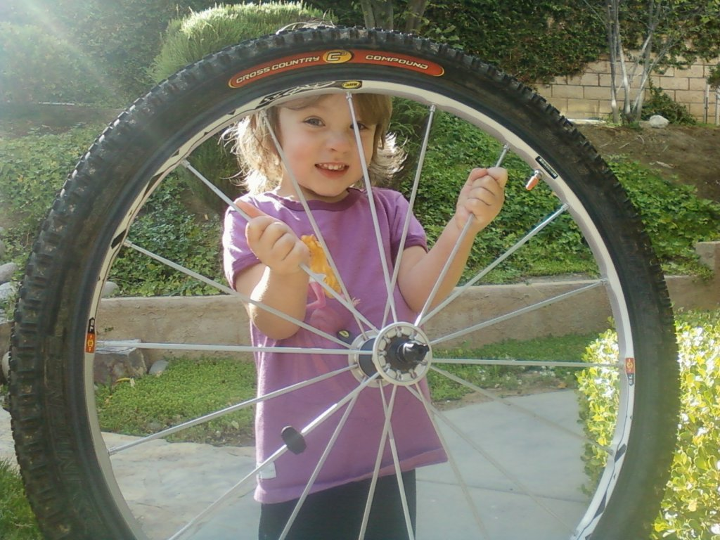 """Daddy, can I have these wheels on my bike?""-0505131726.jpg"