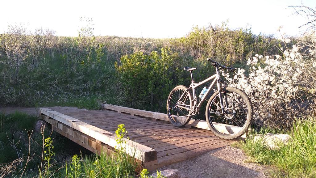 bike +  bridge pics-0508180634c.jpg