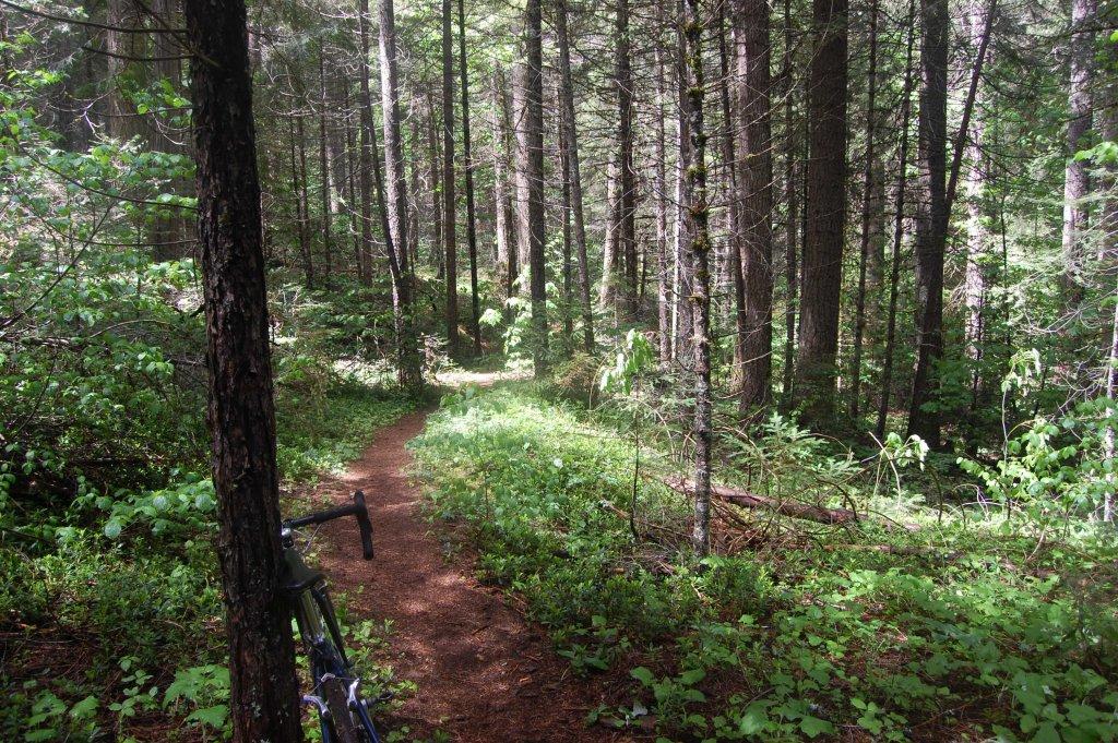 Cross Bikes on Singletrack - Post Your Photos-052214-064.jpg