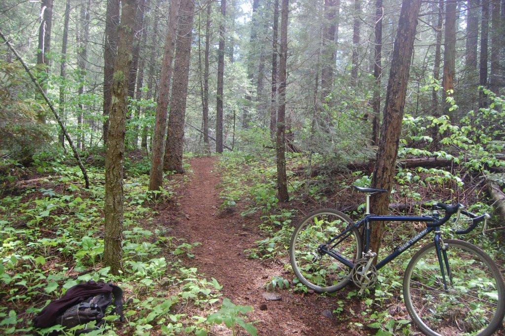 Cross Bikes on Singletrack - Post Your Photos-052214-074.jpg