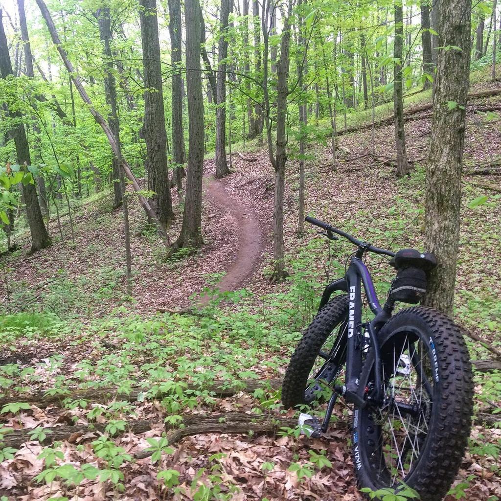 Fat Biking and health-05470eb3-25fd-4a39-b6b6-6b99e19c0752.jpg