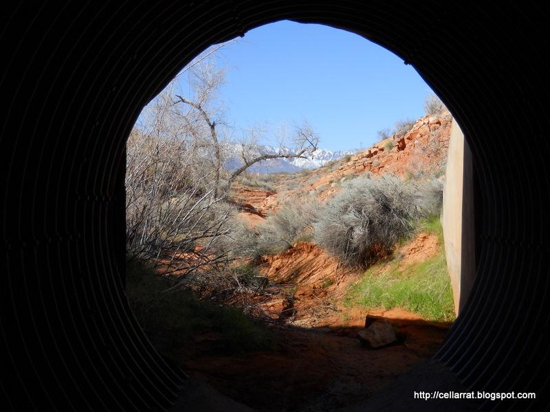Broken Mesa-056.jpg