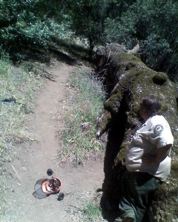 "Pliny's ""Tree Down at Henry W Coe SP"" Contest.-06-02-12_1043_web.jpg"