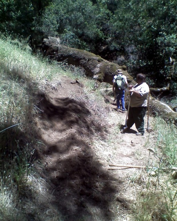 "Pliny's ""Tree Down at Henry W Coe SP"" Contest.-06-02-12_1154_web.jpg"