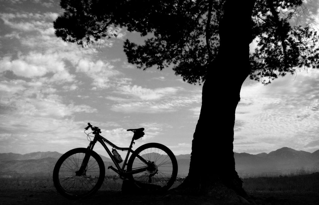 Best MTB Camera Phone Shot You've taken-06272015_lln_bonelli.jpg