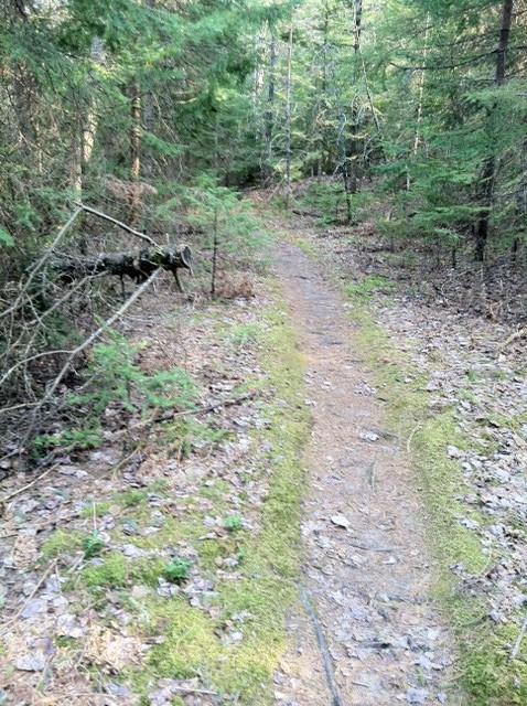 Safety margin on sides of trail-06b.jpg
