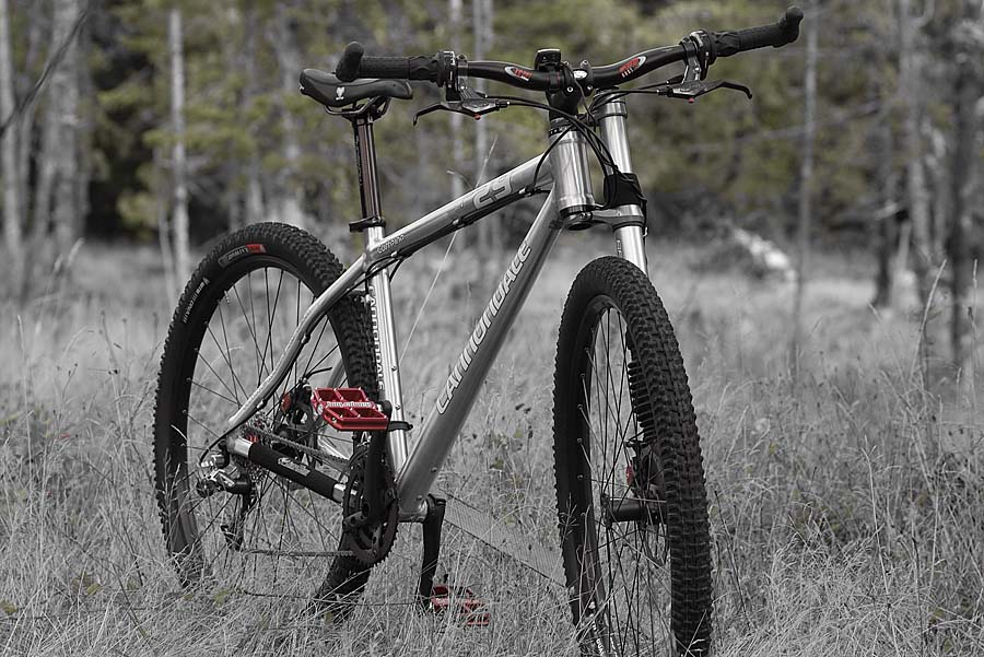 Can We Start a New Post Pictures of your 29er Thread?-071001_155354_8895.jpg